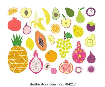 Hand drawn tropical and exotic fruits isolated on white background in unique trendy organic style. Vector illustration for menu design, packaging, cooking book.