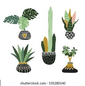 Hand drawn tropical house plants. Scandinavian style illustration, modern and elegant home decor. Vector design flowers.