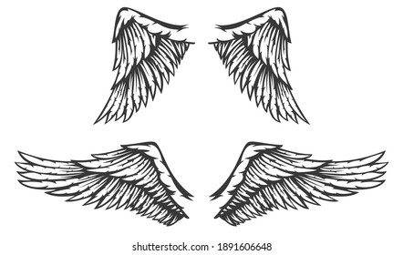 Hand drawn two wing with feathers isolated on white background. Cartoon design element for tattoo, label, branding. Vintage vector illustration.