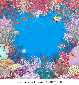 Hand drawn underwater natural elements. Sketch of reef corals  and  vivid swimming fishes. Undersea world theme background. Colored square frame with space for text.