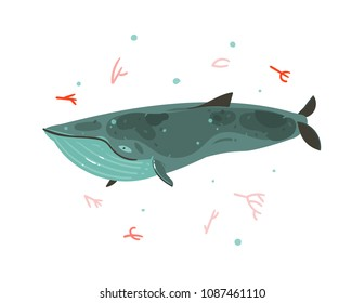 Hand drawn vector abstract cartoon graphic summer time underwater illustrations with coral reefs and beauty big whale character isolated on white background.