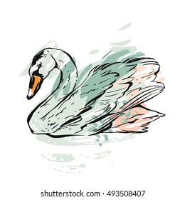 Hand drawn vector abstract ink painted textured graphic swan illustration in pastel colors isolated on white background.Vintage bird drawing illustration.