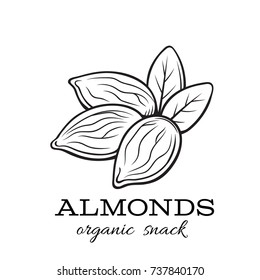 Hand drawn vector almond nuts badge for template label, packing and emblem. Retro sketch style.