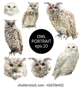 Hand drawn vector amazing animal illustration horned owl portrait, eagle-owl, snowy owl. Beautiful art with wild owl bird. Isolated owl on white background.