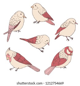 Hand drawn vector birds line art set. Cute little creatures in pastel colors isolated on white background. Wildlife contours.