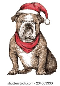 hand drawn vector of bulldog with christmas hat on white background