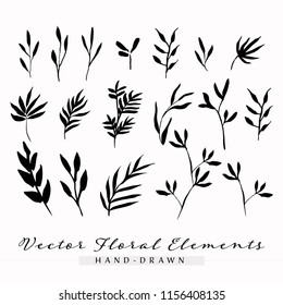 Hand Drawn Vector Floral Elements, Flower Elements, Leaves, Branches, Leaf Drawings