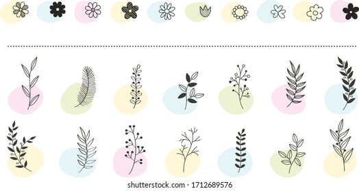 Hand drawn vector floral elements. Branches and leaves colors. Herbs and plants collection. Vintage botanical illustrations.