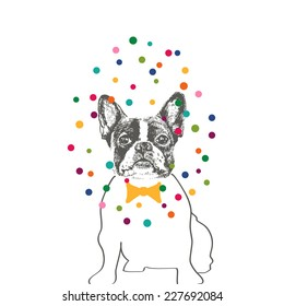 Hand drawn vector of French Bulldog in tie bow with colorful dots