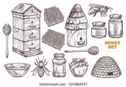Hand drawn vector honey set. Collection of sketch illustrations for beekeeping, apiculture and mead company and business: bees, wooden and straw hives, honey spoon, honeycomb, jars and pot