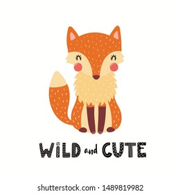 Hand drawn vector illustration of a cute funny fox, with lettering quote Wild and cute. Isolated objects on white background. Scandinavian style flat design. Concept children print. Woodland animal.