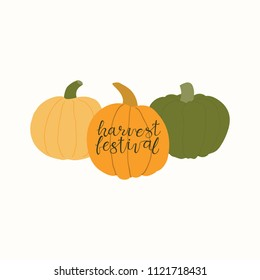 Hand drawn vector illustration of a different pumpkins, with lettering quote Harvest festival. Isolated objects on white background. Flat style design. Concept for gardening, autumn harvest.