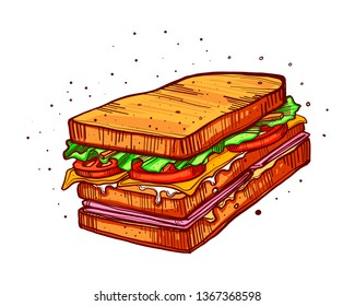 Hand drawn vector illustration or drawing of a sandwich