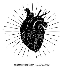 Hand drawn vector illustration with human heart . Used for poster, banner, t-shirt print, bag print, badges and logo design