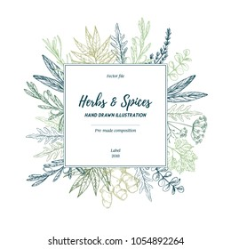 Hand drawn vector illustration. Lable with herbs and spices (sage, tarragon, ginger). Herbal pre-made composition. Perfect for menu, cards, prints, packing, leaflets