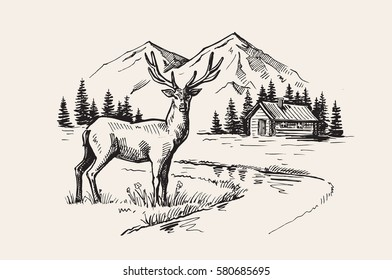 Hand drawn vector illustration of mountain landscape with deer