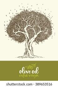 Hand drawn vector illustration of olive tree