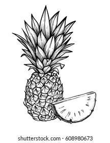 Hand drawn vector illustration - Pineapple. Exotic tropical fruit.