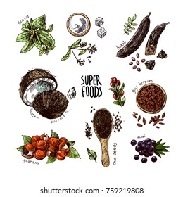 Hand drawn vector illustration superfoods. Sketch style drawing. Goji berries, acai, stevia, coconut, guarana, kerob, chia seeds.