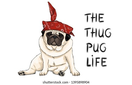hand drawn vector illustration of thug pug puppy dog, sitting down with red western scarf bandana and text