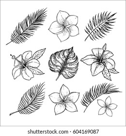 Hand drawn vector illustrations - tropical flowers and palm branches. Summer time. Perfect for invitations, greeting cards, blogs, posters and more.