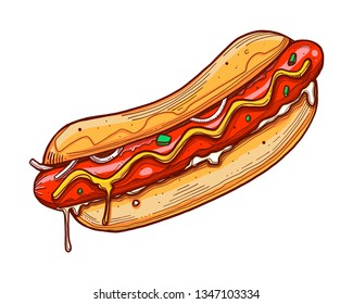 Hand drawn vector ink illustration or drawing of a hot dog