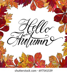 Hand drawn vector lettering. Words Hello Autumn by hand with autumn leaves on background. Vector illustration. Handwritten modern calligraphy. For postcards, posters, prints, greeting cards.