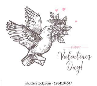 Hand drawn vector love illustration, wedding and Valentines Day card with flying dove with roses flower in the beak and love letter. Vintage retro sketch style. Engraving template design