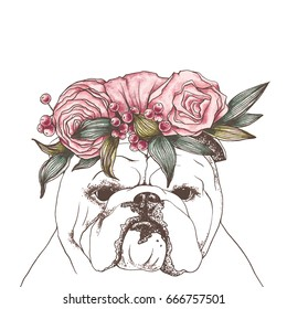 Hand drawn vector outline illustration of portrait of english bulldog with flower bouquet on the head. Outline graphic sketch. Flowers wreath.