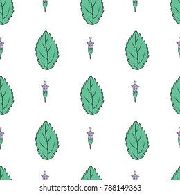 Hand drawn vector seamless floral pattern, Mint leaf, peppermint bud isolated on white background, spicy herb kitchen texture, Doodle cooking ingredient for design package tea, wallpaper, cosmetics