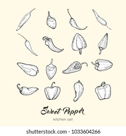 Hand drawn vector set of black and white isolated sweet bulgarian bell peppers, paprika, chili. Line icons for app, logo, label, poster, print, menu, postcard. Vector illustration with sketch peppers.