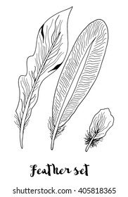 Hand drawn vector set feather on a white background. Vintage tribal feather in sketch style. Series of doodle feather. Hand drawn for adult anti stress coloring page with high details . Monochrome.