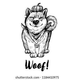 Hand drawn vector skech of Akita -Inu dog