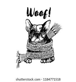 Hand drawn vector skech of cute french bulldog