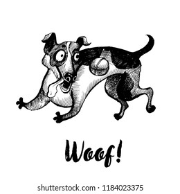 Hand drawn vector skech of playng Jack russel dog