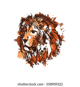 hand drawn vector sketch of Isolated lion's head.