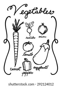 Hand drawn vegetables in black and white.  Includes carrot, radish, onion, tomato, pepper, and eggplant as well as hand written names.