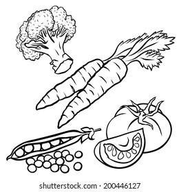 Hand Drawn Vegetables Illustration for Educational Coloring Book Design - Vector Outline Cartoon