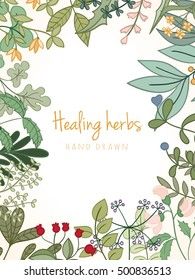 Hand drawn vintage background of medicinal organic healing herbs. Vector medical plants and herbal botanical flower elements can be used for banner template, card, flyer, banner, sale, website