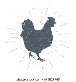 Hand drawn vintage Chicken. Sketch style. Meat. Poultry. Vector illustration. T-shirt print. Poster. Logo. Hipster. Retro badge.