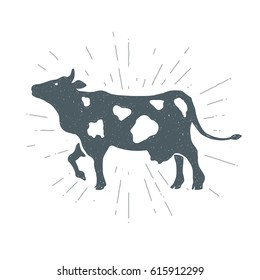 Hand drawn vintage cow, calf. Vector illustration. T-shirt print. Poster.