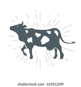 Hand drawn vintage cow, calf. Vector illustration. T-shirt print. Poster.