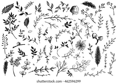 Hand Drawn vintage floral elements. Set of decorative branches and leaves. Vintage vector design elements.Ink illustration.