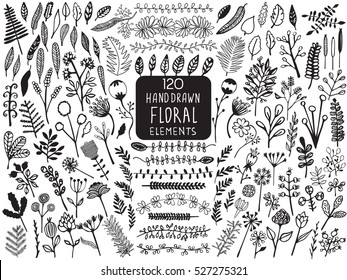 Hand Drawn vintage floral elements of flowers, leaves, branches, decorative plants for design background, invitations, greeting cards, logos, flayers, scrapbooking, etc