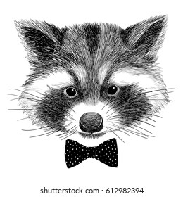 Hand drawn vintage Illustration of raccoon with bow tie. Isolated vector illustration