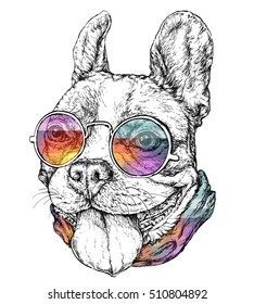 Hand drawn vintage retro hipster style sketch of funny French Bulldog