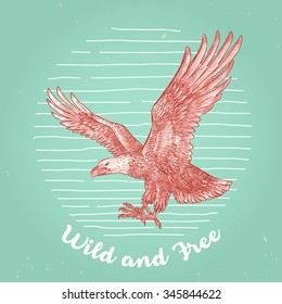 hand drawn vintage style vector eagle flying high