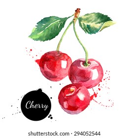 Hand drawn watercolor painting cherry on white background. Vector illustration of berries