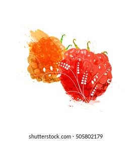 Hand drawn watercolor painting Raspberry with ornament. Vector illustration grunge of berry on white background