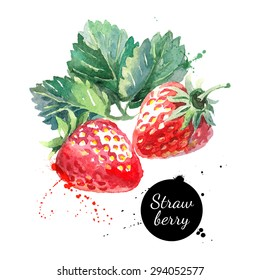 Hand drawn watercolor painting strawberry on white background. Vector illustration of berries